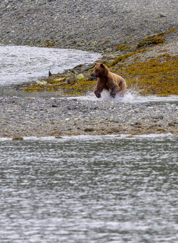 Alaska2012-0729-3026