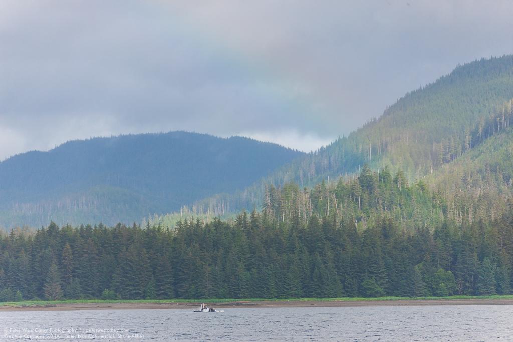 Alaska2012-0809-3124