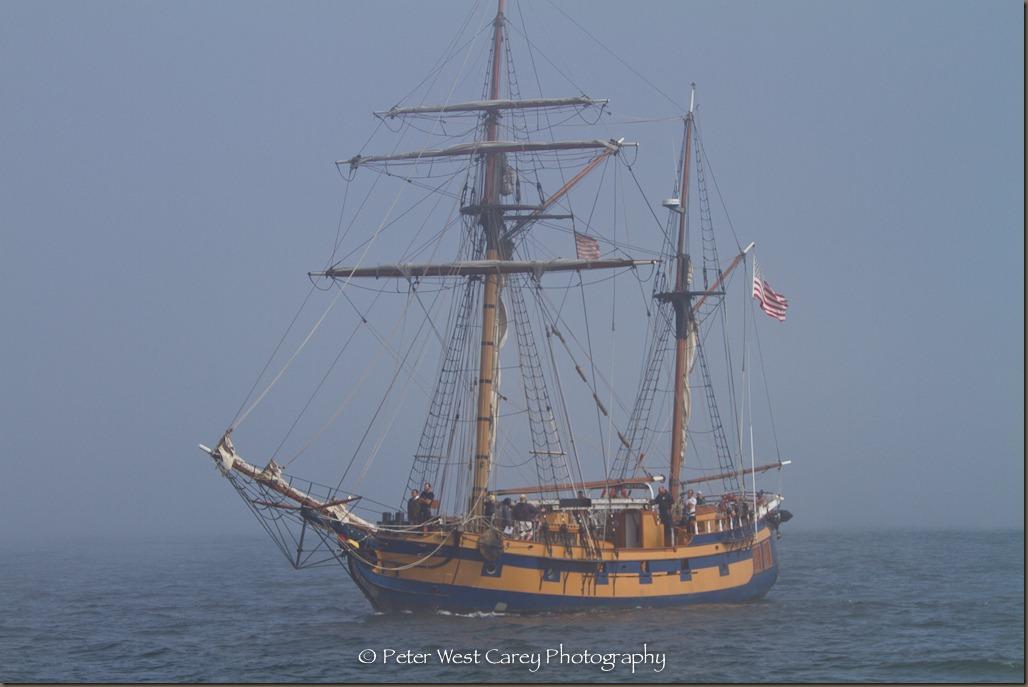 Lady Chieftan On Bellingham Bay