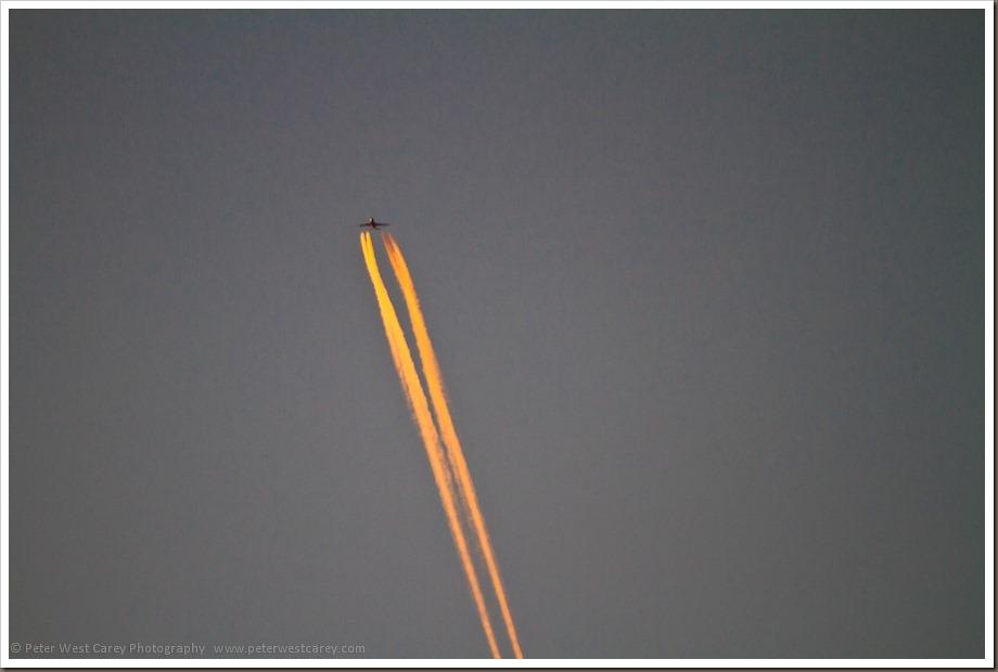 PeterWestCarey-PointReyes-20120217-065545-0509