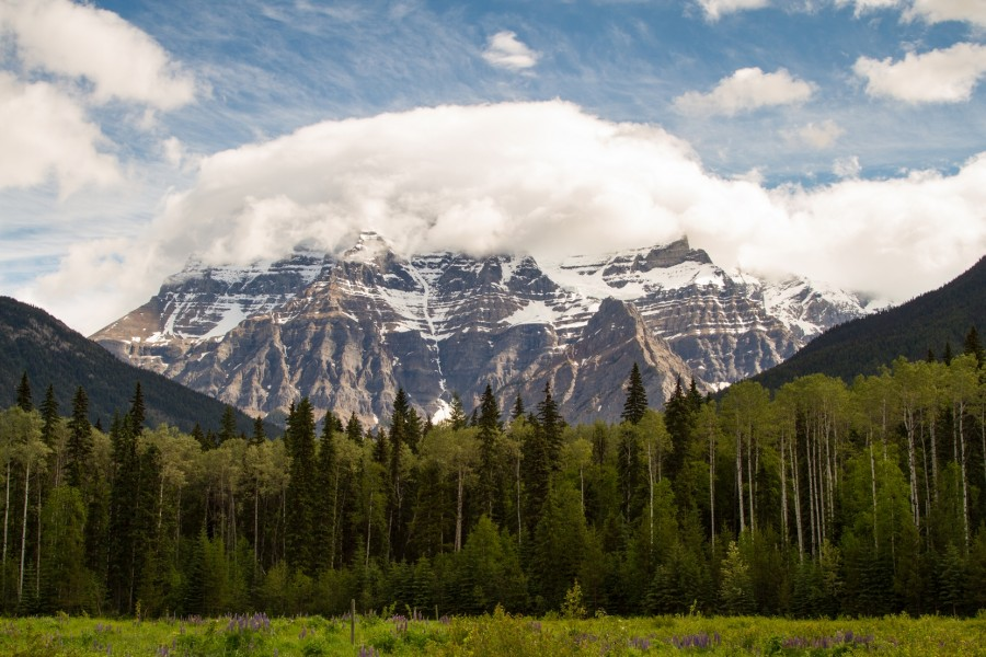 Mt Robson, at 3,954 m, is the tallest peak in the Canadian Rockies.