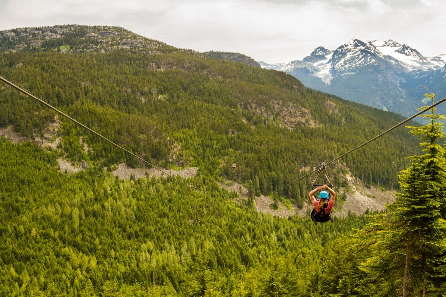 The ziplines in Whistler take adventurers both peak to peak and through the forest canopy.