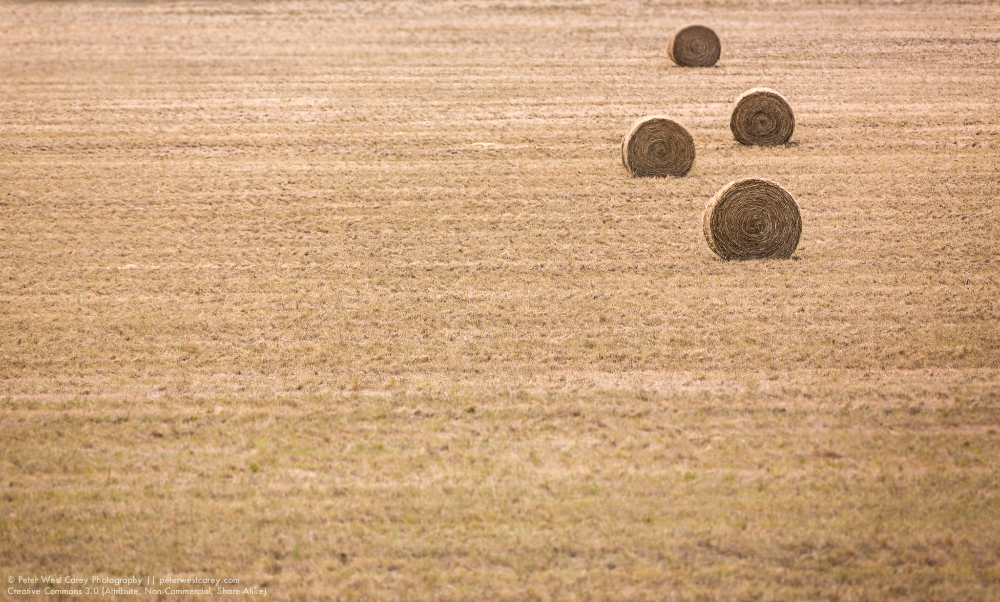 Four Hay Rolls, South Dakota, USA